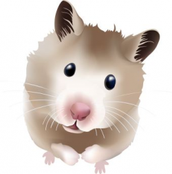 Hamster Free Clipart