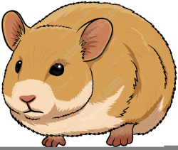 Cartoon Hamster Clipart | Free Images at Clker.com - vector clip art ...