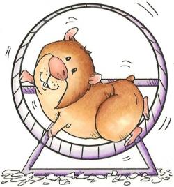 Résultats de recherche d'images pour « hamster clipart » | clipart ...