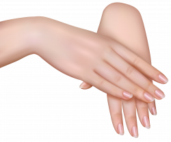 Female Hands PNG Clipart Image | Gallery Yopriceville - High ...
