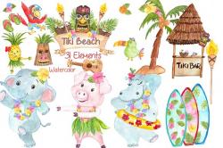 Watercolor Hawaii clipart ~ Illustrations ~ Creative Market