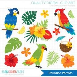Parrots Clipart, Tropical Birds, Palm Leaves, Beach ...