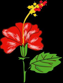 Clipart - Flower Hibiscus