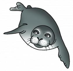 Animals Clip Art by Phillip Martin, Hawaiian Monk Seal