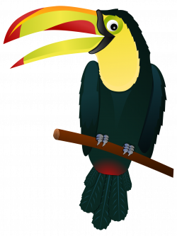 28+ Collection of Toucan Bird Clipart | High quality, free cliparts ...