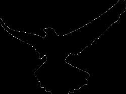 Flying Hawk Clipart 7 - 447 X 450 | carwad.net