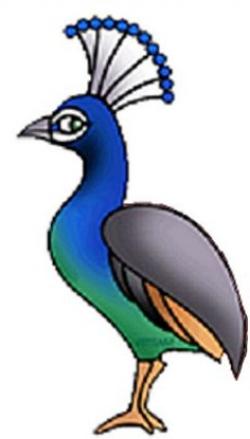 Body Peacock Head Clipart - Clip Art Bay