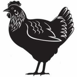 Hens PNG Images | Hens Transparent PNG - Vippng