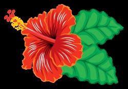 OnlineLabels Clip Art - Hibiscus