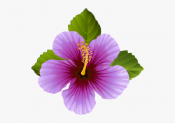 Hibiscus Clipart Violet Flower - Transparent Purple Flower ...