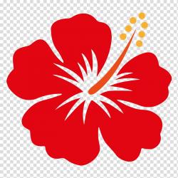 Red hibiscus flower illustration, Hawaii Shoeblackplant ...