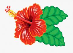 Hibiscus Flower Clipart - Hibiscus Clipart #1036 - Free ...