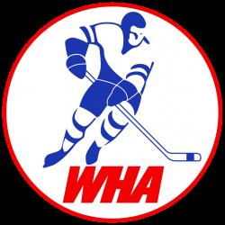 world hockey association - Google Search | WHA | Pinterest | Hockey ...