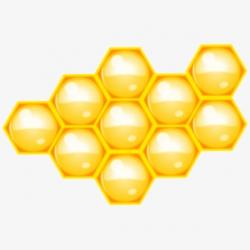 Western Honey Bee Honeycomb Beehive Computer Icons - Beehive ...