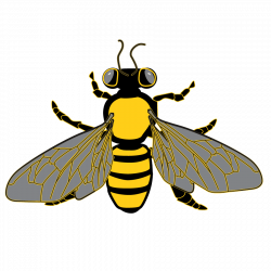 Bee Graphic from Clipart Package | Bee and Honeycomb Graphics ...