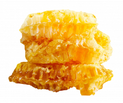 Honeycomb PNG Image - PurePNG | Free transparent CC0 PNG Image Library
