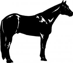 Free Quarter Horse Cliparts, Download Free Clip Art, Free ...
