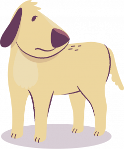 Evolution Pets | Natural Remedies for Mange in Dogs