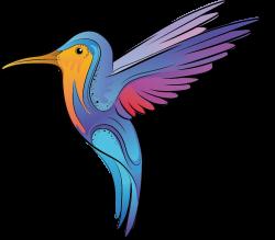 Hummingbird Color Cartoon - Bee Bird 1081*949 transprent Png Free ...