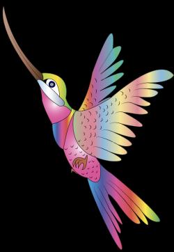 ForgetMeNot: hummingbirds