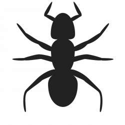 Clipart - Ant Icon