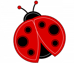 Bug clipart ladybug - Pencil and in color bug clipart ladybug