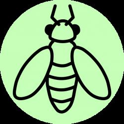 Extension | UW Entomology