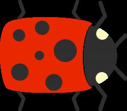 Beetle Cartoon Drawing Clip art - Bug 1920*1696 transprent Png Free ...