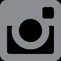 Logo Instagramm Png Gray
