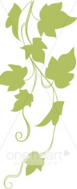 Ivy Clipart | Garden Wedding Clipart