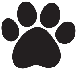 Jaguar Paw Print Group (62+)