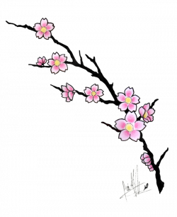 cherry blossom tattoos | Cherry Blossom Tattoo Design by ...