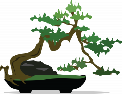 Japanese Clipart japanese bonsai - Free Clipart on Dumielauxepices.net