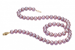 28+ Collection of Bead Necklace Clipart | High quality, free ...
