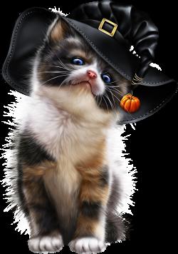 0_2ca5ac_569ff235_orig (1542×2200)   Kot Clipart / Cat Clipart ...
