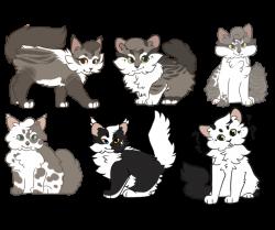 ThistleSneeze || Kitten Tryouts by Miimsey on DeviantArt