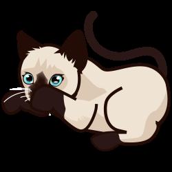 File:PEO-siamese kitten-4.svg - Wikimedia Commons