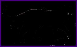 Best Silhouette Of Walking Cat Clipart Org Animal Pics Black Kitten ...