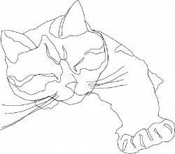 Simple Drawing Of Cat at GetDrawings.com | Free for personal use ...