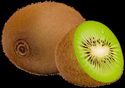 Kiwi Fruit PNG Clipart - Best WEB Clipart