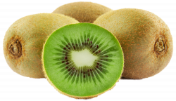 Extremely Inspiration Kiwi Clipart Clip Art At Clker Com Vector ...