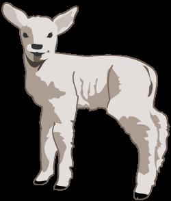 Lamb Image - Cliparts.co
