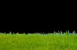 Grass on Hillside Stock Photo-0171-PNG by annamae22.deviantart.com ...