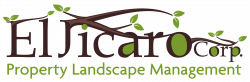 Organic Lawn Care & Sustainable Landscaping | Miami, FL