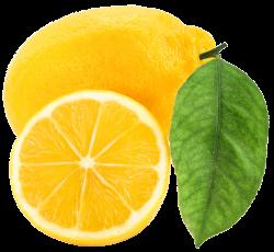 Large Lemon PNG Clipart | ✪ Clipart ✪ | Pinterest | Lemon, Clip ...