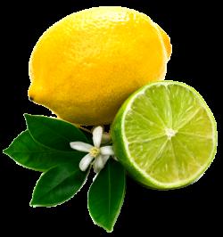 Lemon PNG images and Clipart transparent