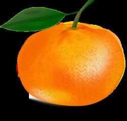 Orange With Leaf Clip Art at Clker.com - vector clip art online ...