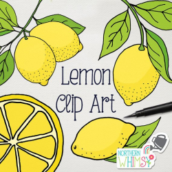 Lemon Clip Art - hand drawn citrus illustrations - summer clipart ...