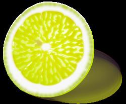 Lemon   Free Stock Photo   Illustration of a yellow lemon slice ...