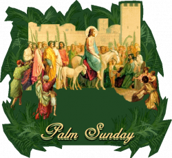 palm+sunday | on palm sunday the church observes the triumphal entry ...